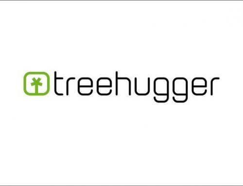 TreeHugger reports