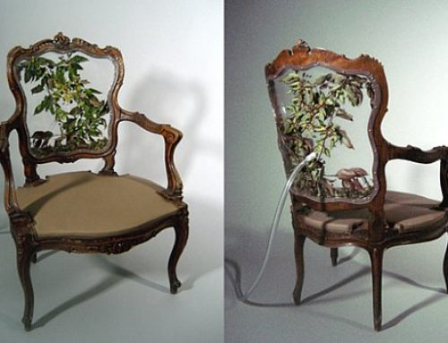 The chair that habitats plants and insects